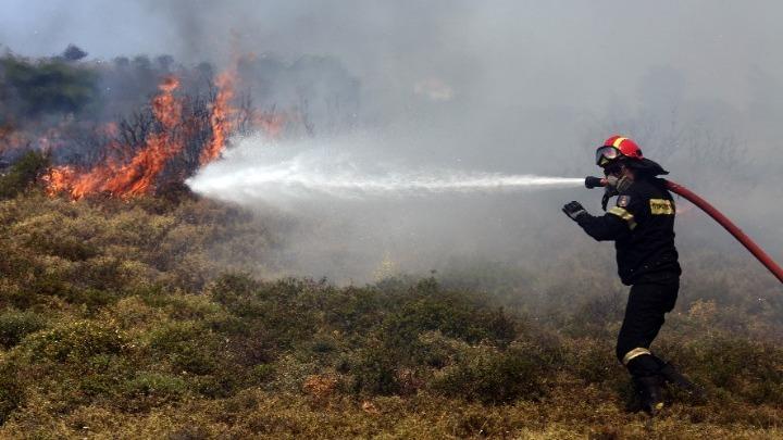 Αχαΐα: Οριοθετημένη η φωτιά στην περιοχή Ζήρεια