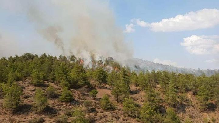 Πυρκαγιά σε αγροτοδασική περιοχή στον δήμο Παιονίας