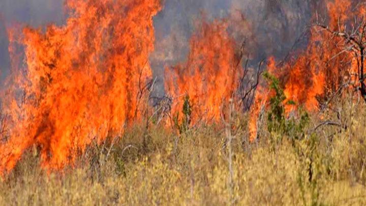 Ρόδος: Υπό έλεγχο η πυρκαγιά στην περιοχή Θολού - Αχαΐα: Σε εξέλιξη η φωτιά στην περιοχή Ζήρεια